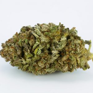 Dragon Marijuana strains